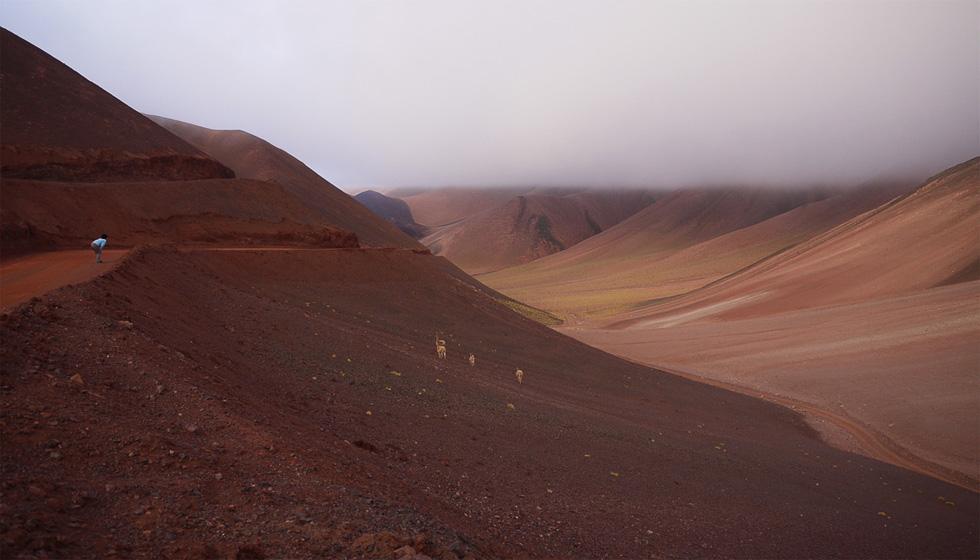 Вулканизмы вокруг Лагуны Брава