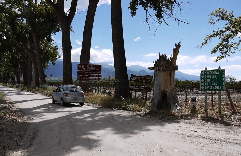 Сказочная дорога в пригороде Кафайате