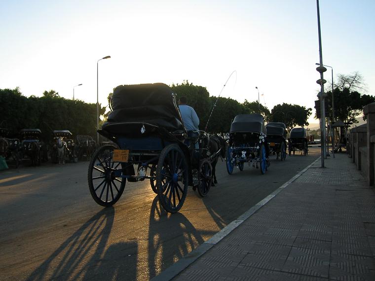 Извозчики в Луксоре
