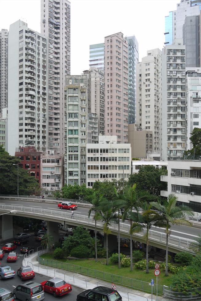 Пальмы в Гонконге