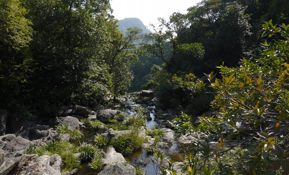 Ручей у основания водопада.