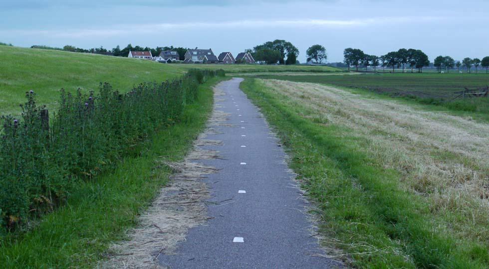 Велодорожка в деревне.