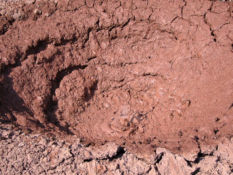 Долина гейзеров. Грязевой пульсирующий источник плюётся горячей глиной. На фотографии видно очередной плевок.