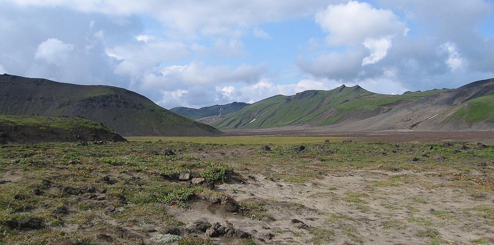 Окрестности вулкана Горелый, вид на долину.