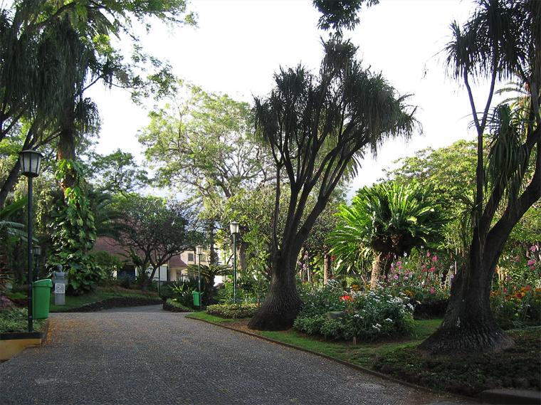 Парк в центре Фуншала