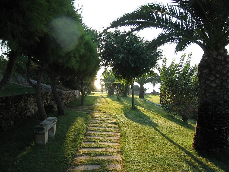 Парк гостиницы Mellieha Bay