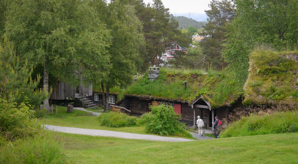 Домики с заросшими крышами