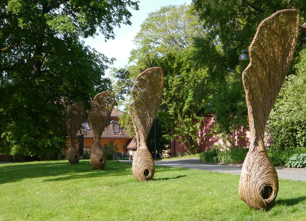 Universitetets Botaniske hage