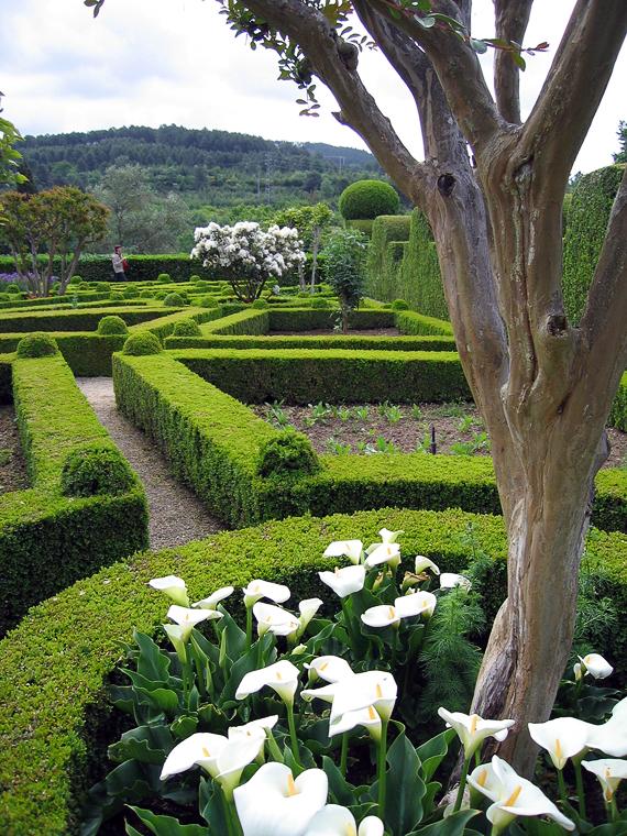 Парк дворца Матеуш