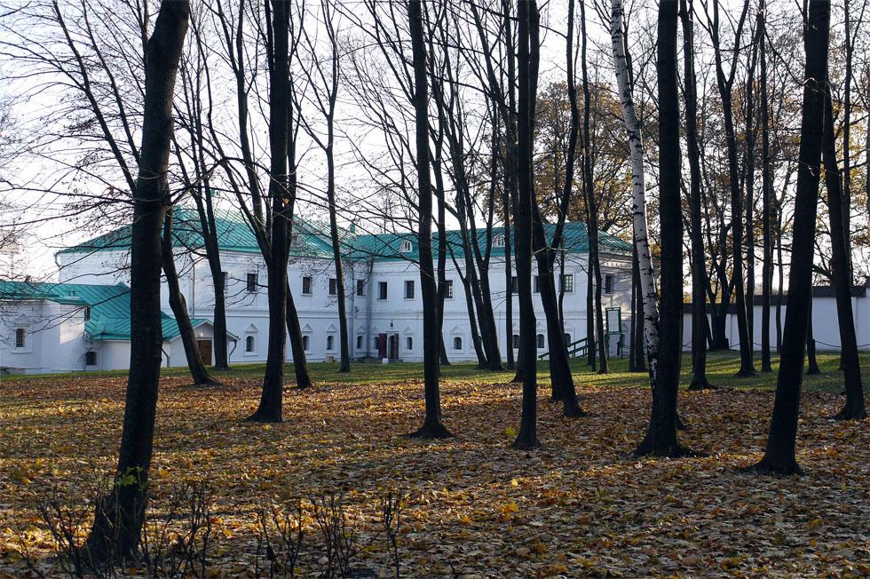 Деревья в Коломенском