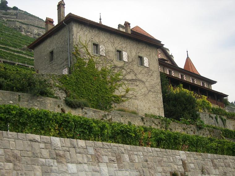 Дорога вдоль женевского озера проходит по склону, на котором растет виноград и живут виноделы