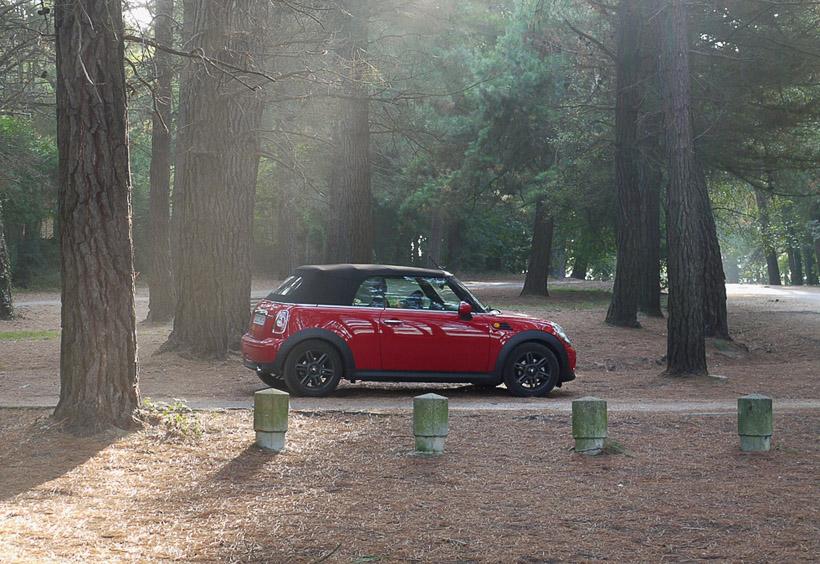 Mini Cooper в лесу