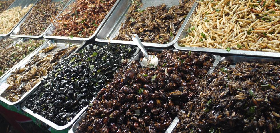 Лоток с жаренными насекомыми в Бангкоке
