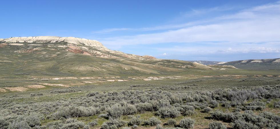 Здесь государством охраняется особенная территория, сохранившая какое-то немыслимое количество очень древних окаменелостей. Мы не нашли ни одной. (Черт!)