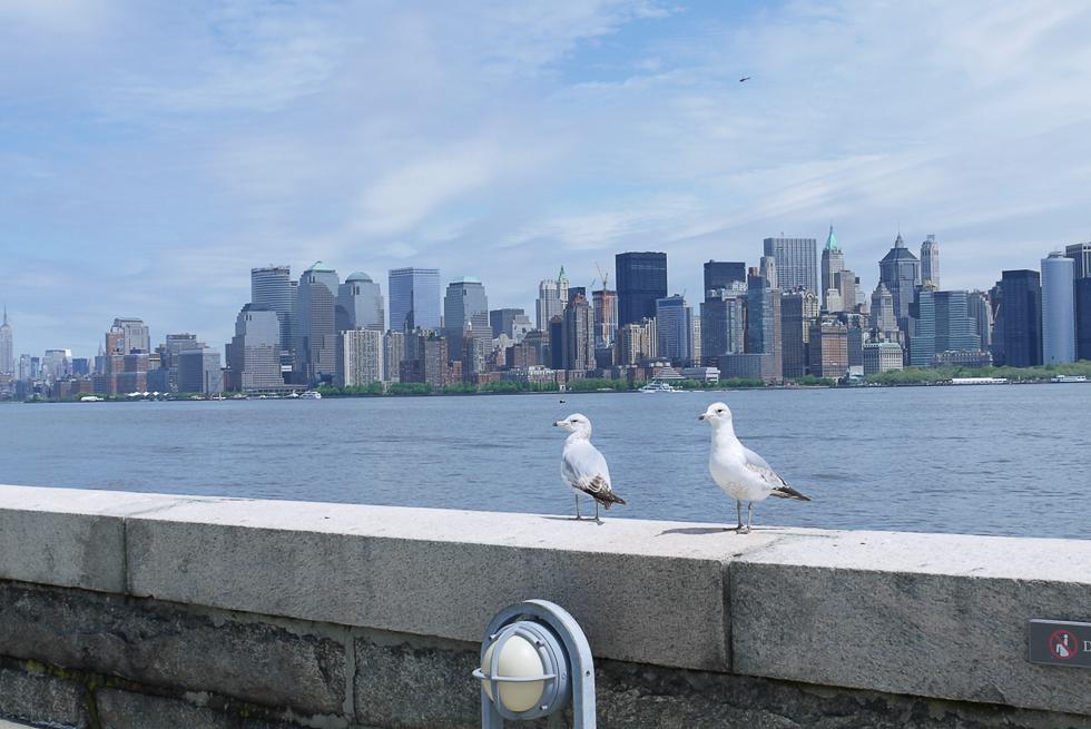 Вид на Манхеттен с Illis Island.