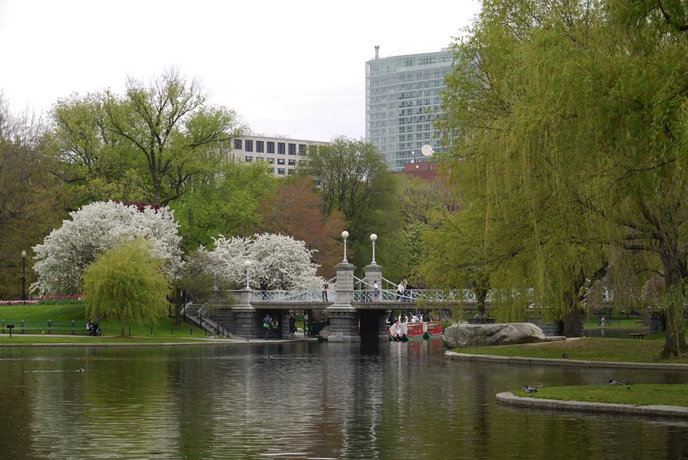 Бостон – очень красивый город, особенно весной, когда цветут деревья.
