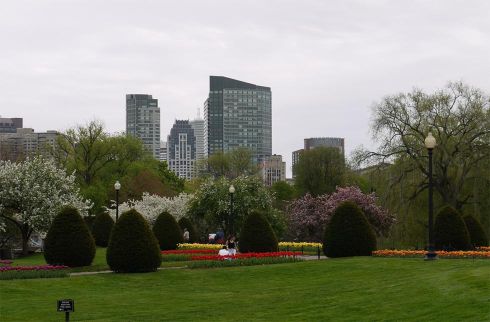Вид из парка на город.