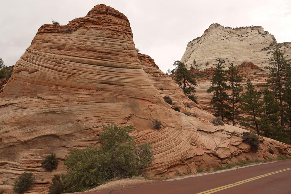 Каждый природный национальный парк имеет свои отличительные черты. в Zion это необычные скалы.