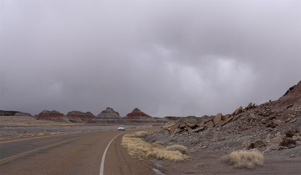 Дорога в национальном парке Окаменевший Лес