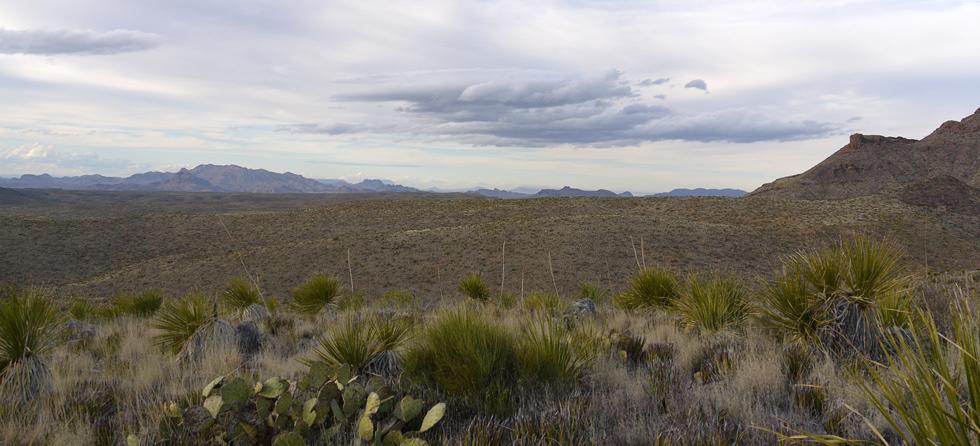 Техасские просторы парка Биг Бенда (Big Bend NP)