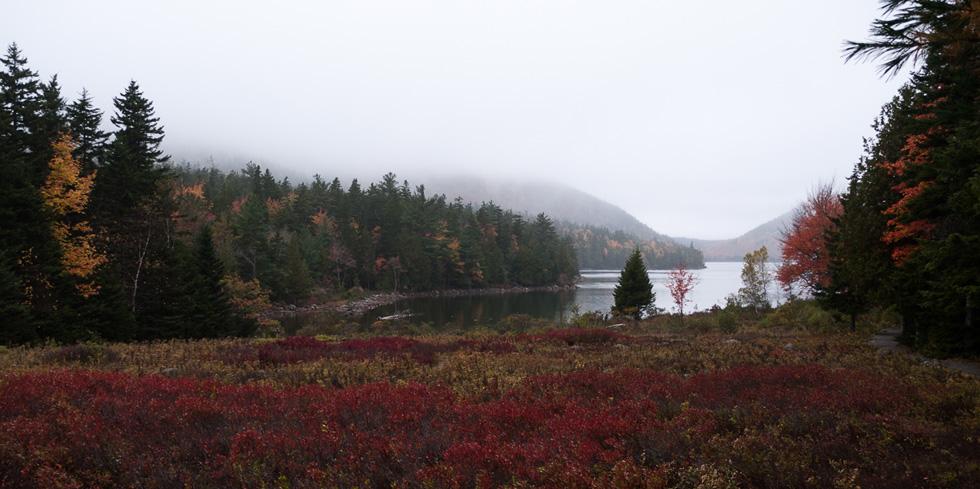 Озеро в тумане