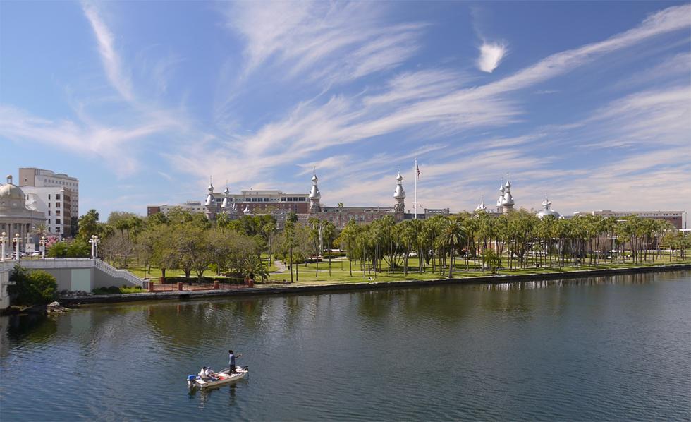 Университет Тампы