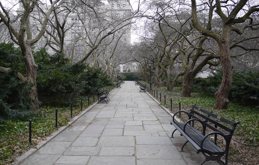 Скамейки в центральном парке