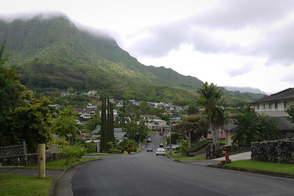 Пригороды Гонолулу, вид из джунглей